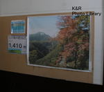 kazNasu-Jan 020-1.jpg